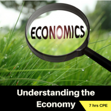 Understanding the Economy 7 hr online CPE course for CPAs