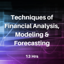 Techniques of Financial Analysis CPE Course for CPAs