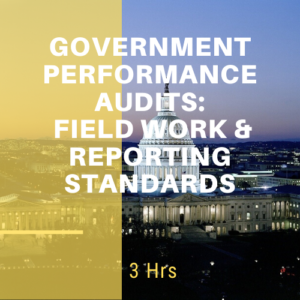 Government Performance Audits: Field Work and Review