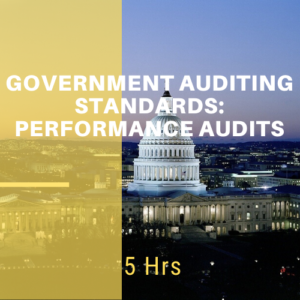 Government Auditing Standards: Performance Audits